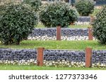modern privacy fence of natural ... | Shutterstock . vector #1277373346