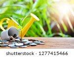 plant money coins saving growth ...   Shutterstock . vector #1277415466