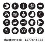 20 vector icon set   stomach ... | Shutterstock .eps vector #1277646733