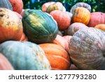 heap of big dirty pumpkins | Shutterstock . vector #1277793280