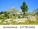 beautiful mountain landscape in ... | Shutterstock . vector #1277812606