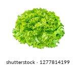 Small photo of Batavia lettuce salad rosette isolated on white. Green leafy veggie.