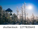 frost and ice crystal covered... | Shutterstock . vector #1277820643