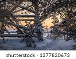 frost and ice crystal covered... | Shutterstock . vector #1277820673
