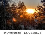 frost and ice crystal covered... | Shutterstock . vector #1277820676