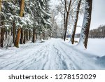 snow covered winter forest... | Shutterstock . vector #1278152029