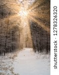 road in winter forest and... | Shutterstock . vector #1278326320