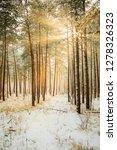 dreamy landscape with winter... | Shutterstock . vector #1278326323