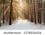 road in winter forest and... | Shutterstock . vector #1278326326