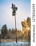 dreamy landscape with winter... | Shutterstock . vector #1278326359