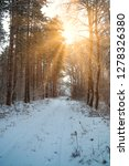 road in winter forest and... | Shutterstock . vector #1278326380