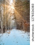 road in winter forest and... | Shutterstock . vector #1278326383