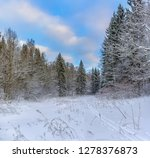 sunny winter day in the forest... | Shutterstock . vector #1278376873