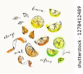 hand drawn citrus cuts and zest ... | Shutterstock .eps vector #1278412489