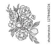 sketch floral botany set. peony ... | Shutterstock .eps vector #1278468226
