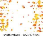 oak  maple  wild ash rowan... | Shutterstock .eps vector #1278474223