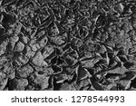 the parched soil   Shutterstock . vector #1278544993