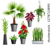 house plants realistic set with ... | Shutterstock .eps vector #1278713890