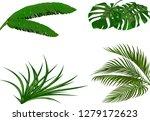 set. green leaves of banana ... | Shutterstock . vector #1279172623