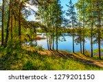 sunny summer morning outside... | Shutterstock . vector #1279201150