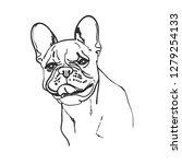 hand drawn vector illustration... | Shutterstock .eps vector #1279254133