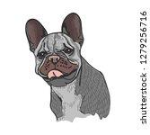 hand drawn vector illustration... | Shutterstock .eps vector #1279256716