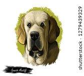spanish mastiff mastin espanol... | Shutterstock . vector #1279439329