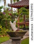 bonsai tree in a garden in bali ... | Shutterstock . vector #1279453993