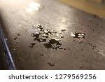 personally taken photos  some... | Shutterstock . vector #1279569256