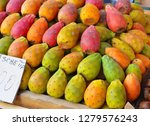 colorful fruit of the prickly...   Shutterstock . vector #1279576243