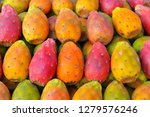 colorful fruit of the prickly...   Shutterstock . vector #1279576246