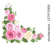 Pink And White Roses  Rosebuds...