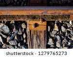 closeup view of railway tracks... | Shutterstock . vector #1279765273