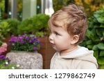 portrait of cute  little  boy.... | Shutterstock . vector #1279862749