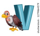 Animal Alphabet. V Is For...