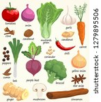 culinary spices and vegetables...   Shutterstock .eps vector #1279895506