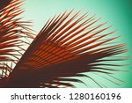 red palm tree leaves over blue... | Shutterstock . vector #1280160196