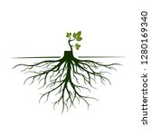 tree roots and germinate limb.... | Shutterstock .eps vector #1280169340