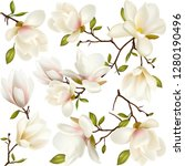 flowers and buds magnolia.... | Shutterstock .eps vector #1280190496