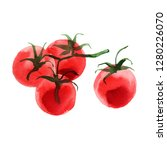 tomatos. the tomato branch... | Shutterstock . vector #1280226070