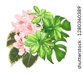 bouquet with tropical flowers... | Shutterstock .eps vector #1280360389