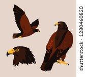 imposing hawks birds with... | Shutterstock .eps vector #1280460820