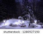 night. winter. garden lights...   Shutterstock . vector #1280527150
