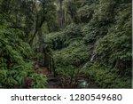 natural beauty of bali | Shutterstock . vector #1280549680