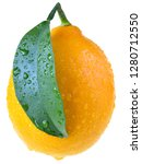 full lemon close up with leaf...   Shutterstock . vector #1280712550