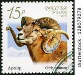 Small photo of RUSSIA - CIRCA 2013: A stamp printed in Russia shows argali (Ovis ammon), series Fauna of Russia, Wild goats and rams, circa 2013
