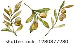green olives watercolor... | Shutterstock . vector #1280877280