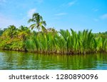 canoe trip from chaung tha to... | Shutterstock . vector #1280890096