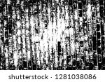 rough grunge pattern design....   Shutterstock .eps vector #1281038086