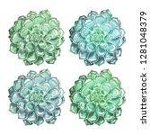 a set of succulents hand drawn... | Shutterstock . vector #1281048379